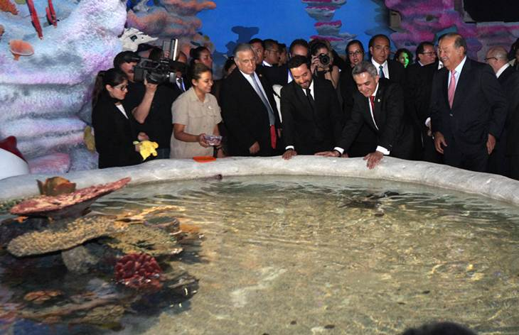 Touch tank at Acuario Inbursa